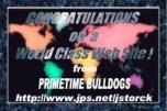 [Primetime Bulldogs World Class Award]